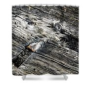 Abstract Shapes On An Old Weathered Wooden Board Shower Curtain