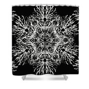 Abstract Snowfalke Shower Curtain