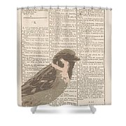 Abstract Sparrow On Dictionary Shower Curtain
