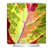 Abstract Summer's End Shower Curtain