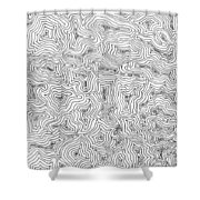 Abstract Swirl Design In Black And White Shower Curtain