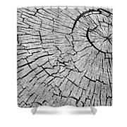 Abstract Tree Cut Shower Curtain