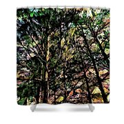 Abstract Trees 691 Shower Curtain