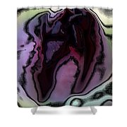 Abstract Tulip Shower Curtain