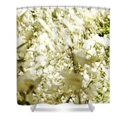 Abstract White Shower Curtain
