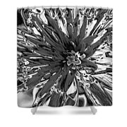 Abstract Wildflower 10 Shower Curtain