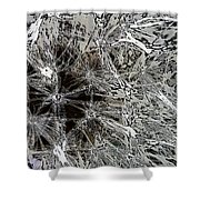 Abstract Wildflower 7 Shower Curtain