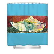 Abstract With A Boat Shower Curtain