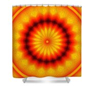 Abstract Xanthous And Black.  Shower Curtain
