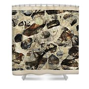 Abstraction 2324 Shower Curtain