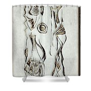 Abstraction 2824 Shower Curtain