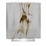 Abstraction 2929 Shower Curtain