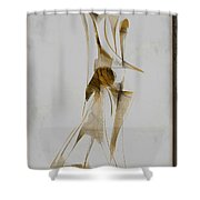 Abstraction 2931 Shower Curtain