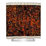 Abstraction 3047 Shower Curtain