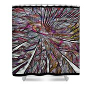 Abstraction 3097 Shower Curtain