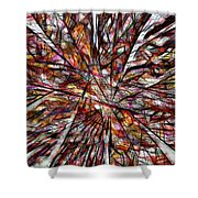 Abstraction 3098 Shower Curtain