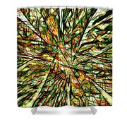 Abstraction 3099 Shower Curtain