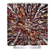 Abstraction 3100 Shower Curtain