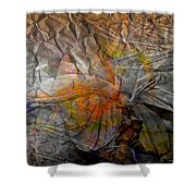 Abstraction 3414 Shower Curtain