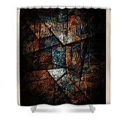 Abstraction 3421 Shower Curtain