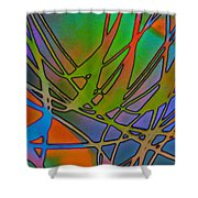 Abstraction Shower Curtain