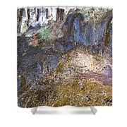 Abstraction In Color And Texture From Wet Rock Shower Curtain