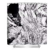 Abstraction Of Nature No. 4 Shower Curtain