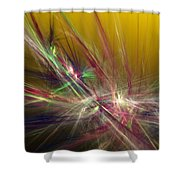 Abstracty 110310 Shower Curtain
