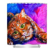 Abstrcat Shower Curtain