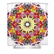 Abundantly Colorful Orchid Mandala Shower Curtain