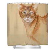 Abyssinian Shower Curtain