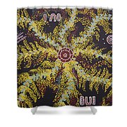 Acacia Blossoms In Oz Shower Curtain
