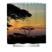 Acacia Land Shower Curtain