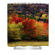 Acadia Colors Shower Curtain