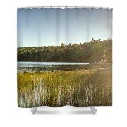 Acadia National Park Shoreline In Evening Sun Shower Curtain