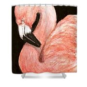 Aceo Flamingo Shower Curtain