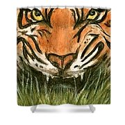 Aceo Tiger Shower Curtain