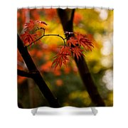 Acer Silhouette Shower Curtain