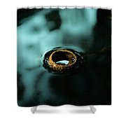 Acorn Cap Shower Curtain