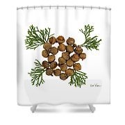Acorns With Cedar Shower Curtain