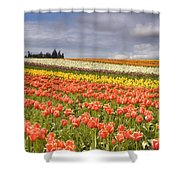 Across Colorful Fields Shower Curtain