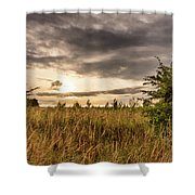 Across Golden Grass Shower Curtain by Nick Bywater