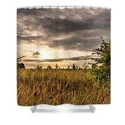 Across Golden Grass Shower Curtain