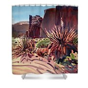 Across Monument Valley Shower Curtain