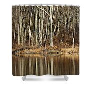 Across Skymount Pond - Autumn Browns Shower Curtain
