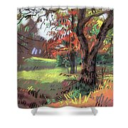Across The Creek II Shower Curtain