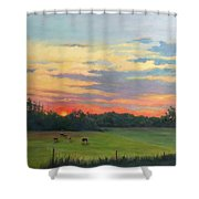 Across The Pasture Shower Curtain