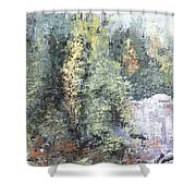 Across The Ravine Shower Curtain