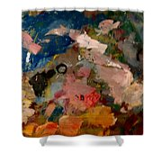 Acryl Color Abstract Shower Curtain