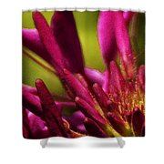 Actiniaria Ink Shower Curtain